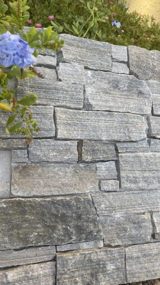 PAREMENT QUARTZITE MULTICOLOR En Z sur base ciment