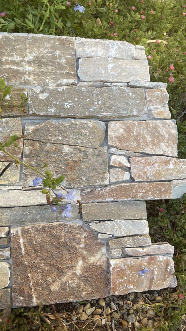 Parement mural en pierre naturelle Quatzite doré en Z sur support ciment