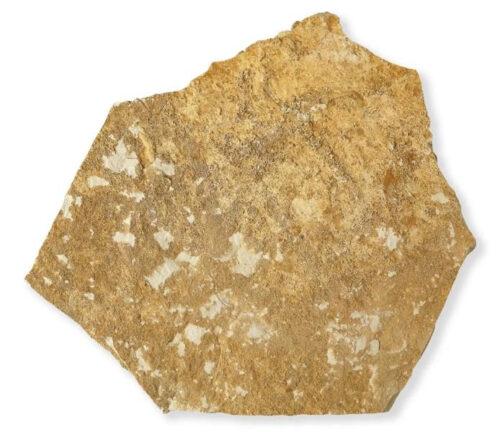 Parement pierre mureuse